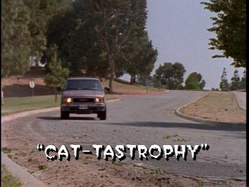 "Title Card for ""Cat-tastrophy""."