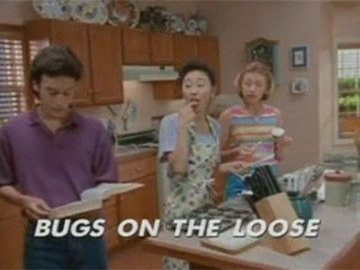 "Title Card for ""Bugs on the Loose""."