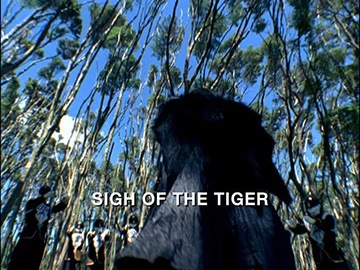 "Title Card for ""Sigh of the Tiger""."