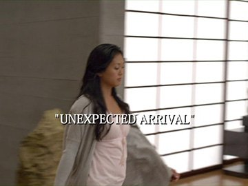 "Episode Title Card for ""Unexpected Arrival"""